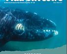 Revista Vida Silvestre 138
