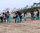 Censo y limpieza de playa en Mar del Plata