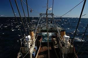 © Pesca en el Mar Argentino