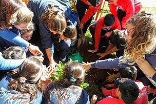 © Colegio Argentino Americano plantando árboles nativos