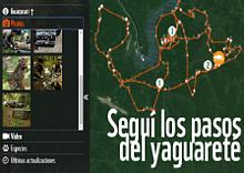 © Seguí los pasos del yaguareté