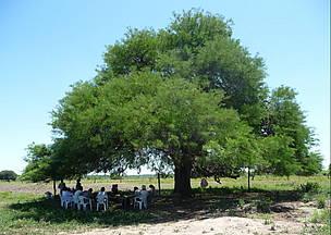 © Participamos en el ordenamiento territorial de Chaco
