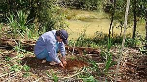 © Restaurando el bosque nativo