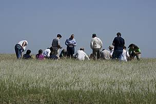 © Nuevo Curso de Ganadería para productores de la Cuenca del Salado
