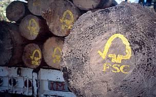 © Consejo de Manejo Forestal es una organización internacional cuyo objetivo es promover el uso ambientalmente responsable, socialmente benéfico y económicamente viable de los bosques del mundo.