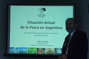 © Guillermo Cañete, coordinador del Programa Marino de Vida Silvestre, en la conferencia