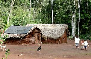 © Unos 60 millones de personas que componen los pueblos originarios de las diferentes regiones del planeta, dependen enteramente de los bosques para su subsistencia.