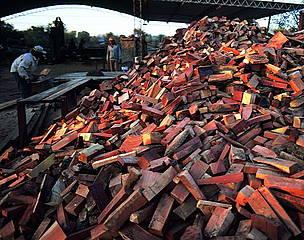 / ©: Se estima que el 30% del volumen total de la madera de bosques nativos que se comercializa es ilegal