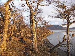 / ©: Reserva Laguna Negra, provincia de Tierra del Fuego